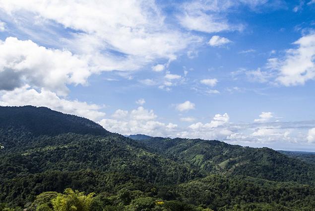 paisaje santa juana
