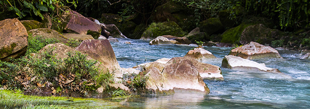 La magia de nuestro Río Celeste