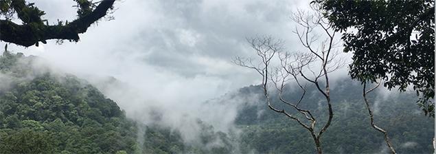 ¡De canopy en Tierras Enamoradas!