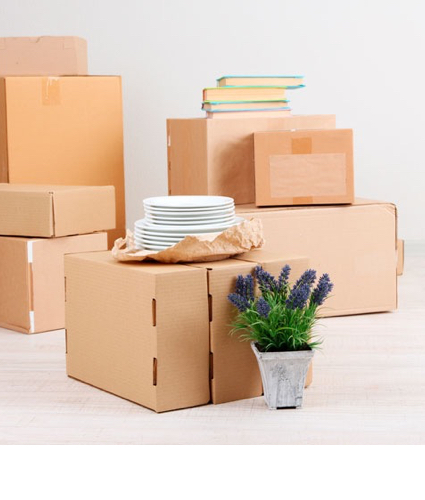 La vida en cajas